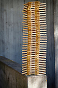 """Ingrid Wennerberg's ('11) wood sculpture entitled, """"Childhood Connection"""" sits outside the Forum on Wednesday."""