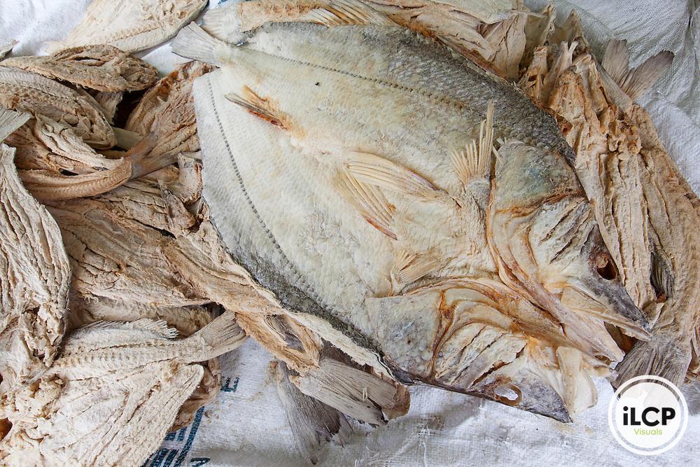 Dried fish offered in street market, La Ceiba, Atl·ntida, Honduras, April