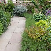 Urban front garden, London
