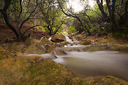 Nahal Parod (Parod stream or Parod river) is a nature reserve in the Upper Galilee, Israel