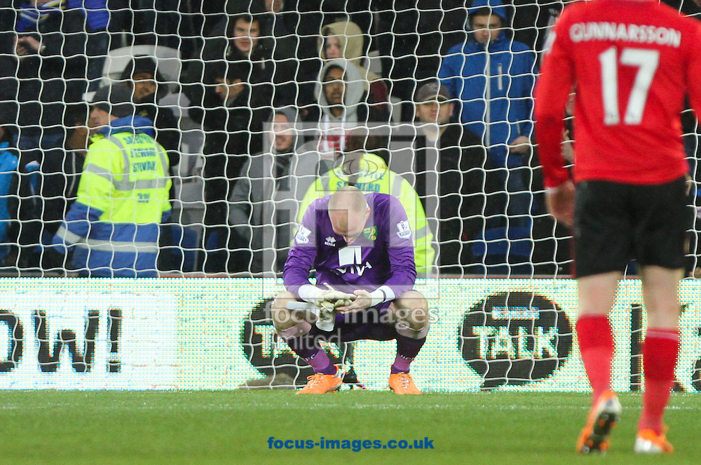 Picture by Tom Smith/Focus Images Ltd 07545141164<br /> 01/02/2014<br /> John Ruddy of Norwich City looks to the floor after the final whistle during the Barclays Premier League match at the Cardiff City Stadium, Cardiff.