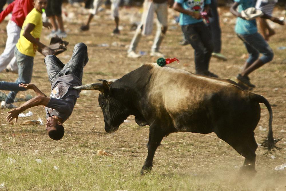 Un aficionado es coreado por un toro durante una corraleja en Turbaco, Bolivar, Colombia.