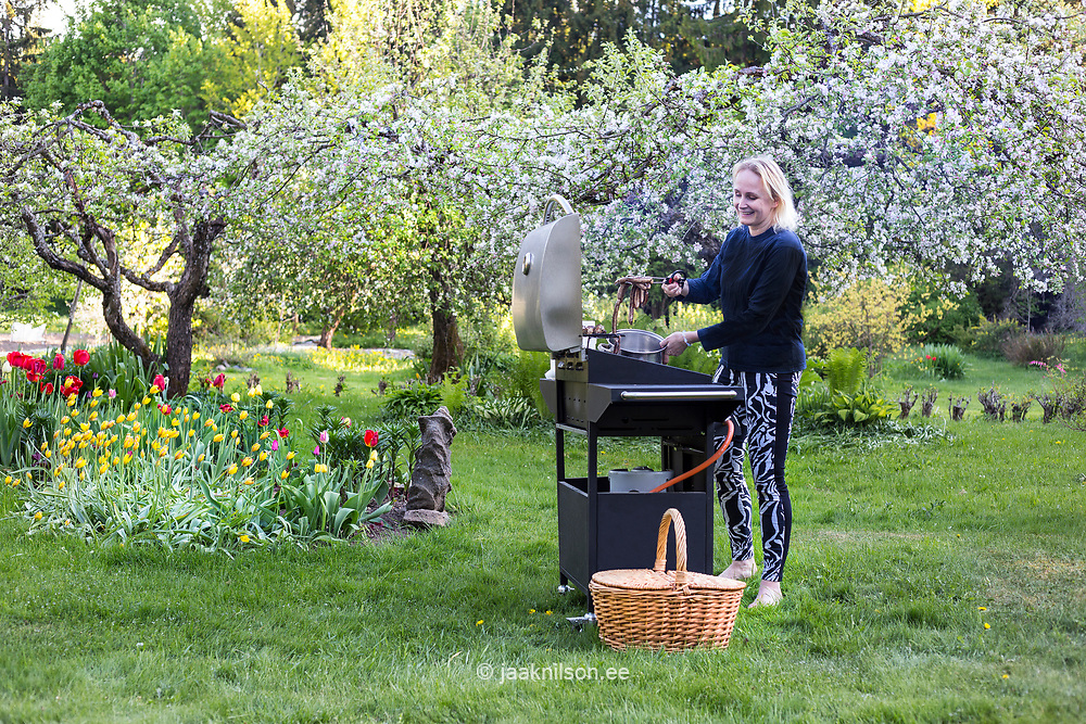 Woman grilling food at backyard in Estonia. Barbecue, grill, garden. Bloom, spring.