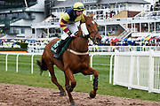 Never Complain and jockey Charlie Marshall heading for the start of the 4.05PM The Randox Health Foxhunters' Steeple Chase (Class 2) 2m 5f during the Grand National Festival Week at Aintree, Liverpool, United Kingdom on 4 April 2019.