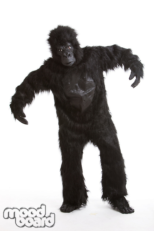 Young man wearing a gorilla costume against white background
