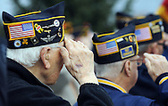 Veterans salute during the national anthem at Yardley's Veteran's Day ceremony Wednesday November 11, 2015 in Yardley, Pennsylvania.  (Photo by William Thomas Cain)