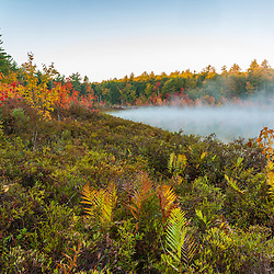 Morning mist rises from Round Pond in Barrington, New Hampshire. Fall. Bog.