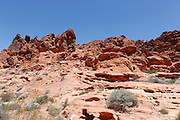 Valley of Fire State Park in Overton, Nevada on Sunday, June 29, 2014.
