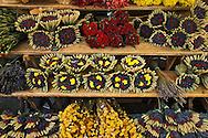 Lavender arrangemenst for sale in outdoor market, Lisle S-La-Sorque de Provence, France