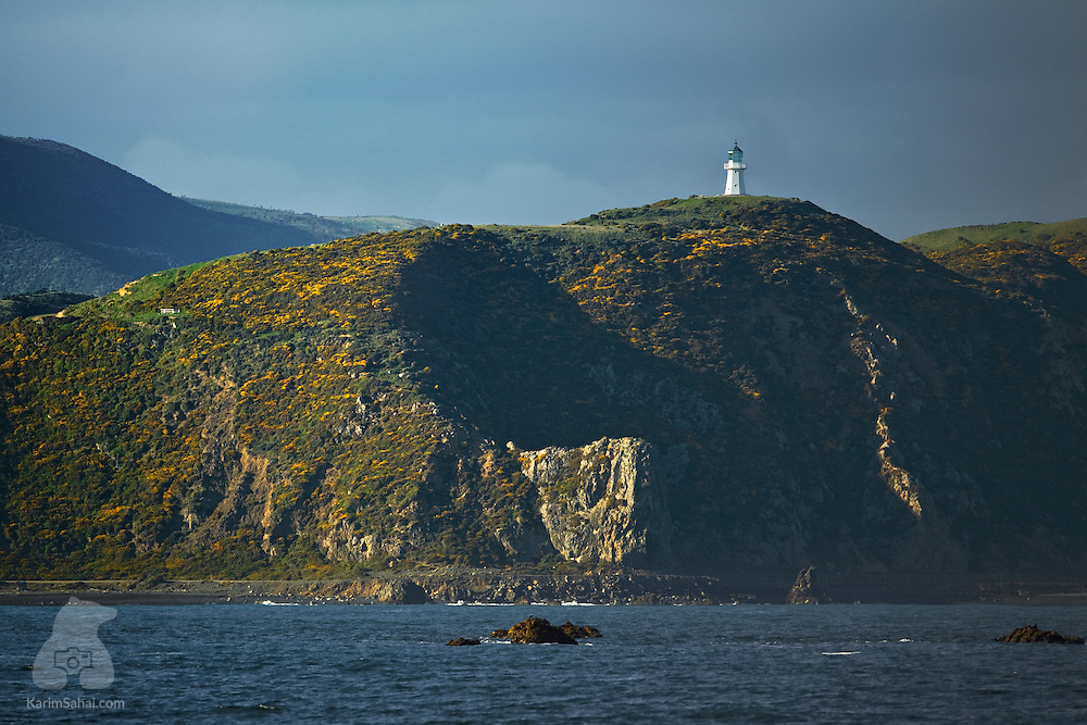 Pencarrow Head lighthouse, Wellington, New Zeland.