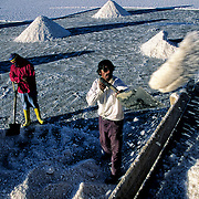 Celso and his wife load the truck of salt that then they were taking to Colchani .  Salar de Uyuni ( Uyuni salt flat ) . Department  of Potos&iacute;  ( Los Lipez).  South West  Bolivia. <br /> Adult Altiplano America Andes Arid  Aridity Barren  Bolivia Cleaver Color Colour Cone  Day Daytime  Department  Desert Desolate Desolation Dry  Exterior Extraction  Female Geography Hack Hard  Heat Highlands  Horizontal  Human  Latin America Lake  Los Lipez Lorry  Male Man Men Miner Mining Nature  Resource  Natural  One Outdoors Outside  Pan People  Person Pyramide Potos&iacute;  Production  Region Resource Rural Salar de Uyuni  Salt Flat  Salt Pan  Salt lake  Scenic Seasoning Shovel Single Shape South America  Southwest  Sud Sunglasses  Surface Travel  Truck  West White Woman Women Work  Worker Working