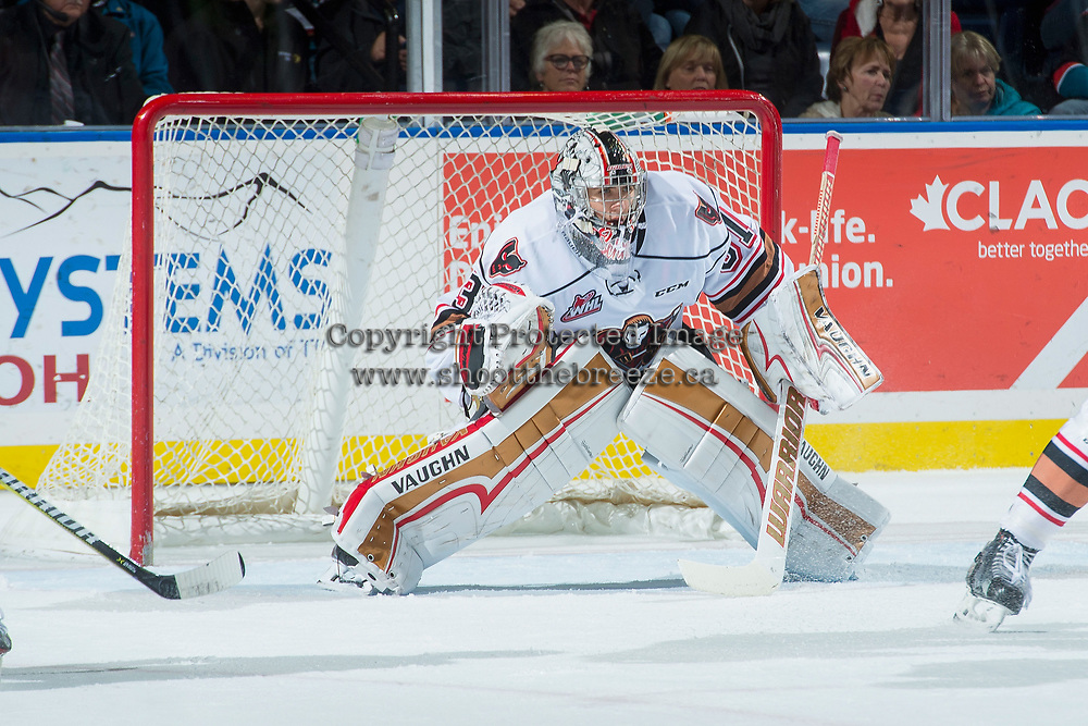 KELOWNA, CANADA - OCTOBER 13: Nick Schneider #31 of the Calgary Hitmen defends the net against the Kelowna Rockets on October 13, 2017 at Prospera Place in Kelowna, British Columbia, Canada.  (Photo by Marissa Baecker/Shoot the Breeze)  *** Local Caption ***