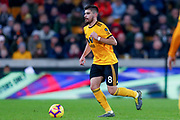 Wolverhampton Wanderers midfielder Ruben Neves (8) in action  during the Premier League match between Wolverhampton Wanderers and Newcastle United at Molineux, Wolverhampton, England on 11 February 2019.