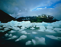 Icebergs under overcast sky.