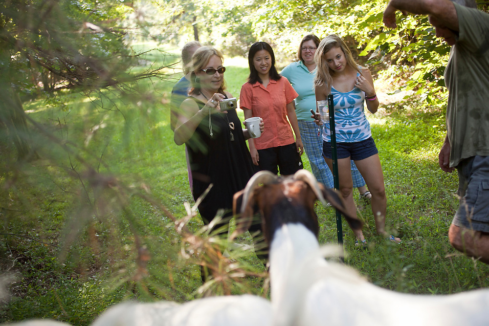 Megan Laveille, far left, and her daughter, Kristin, far right, visiting from Houston, TX, watch with neighbors Winnie Law, middle left, and Janice Law, middle right, as a herd of goats are fenced into the backyard of Steve Holdaway's home in Chapel Hill, N.C., Thurs., July 22, 2010...D.L. Anderson for The Wall Street Journal..GOATS