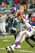 16 Jan 2005: L. J. Smith of the Philadelphia Eagles fumbles which is caught by Freddie Mitchell for a touchdown during the Philadelphia Eagles 27-14 victory over the Minnesota Vikings at Lincoln Financial Field in Philadelphia, PA. <br />