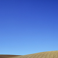 Field of browning cereal stubble on gently rolling hills under clear blue sky Lincolnshire Wolds England UK