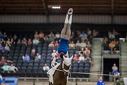 Brüsewitz Thomas, GER, Danny Boy Old, Lunger Looser Patrick<br /> World Equestrian Games - Tryon 2018<br /> © Hippo Foto - Stefan Lafrenz<br /> 22/09/18