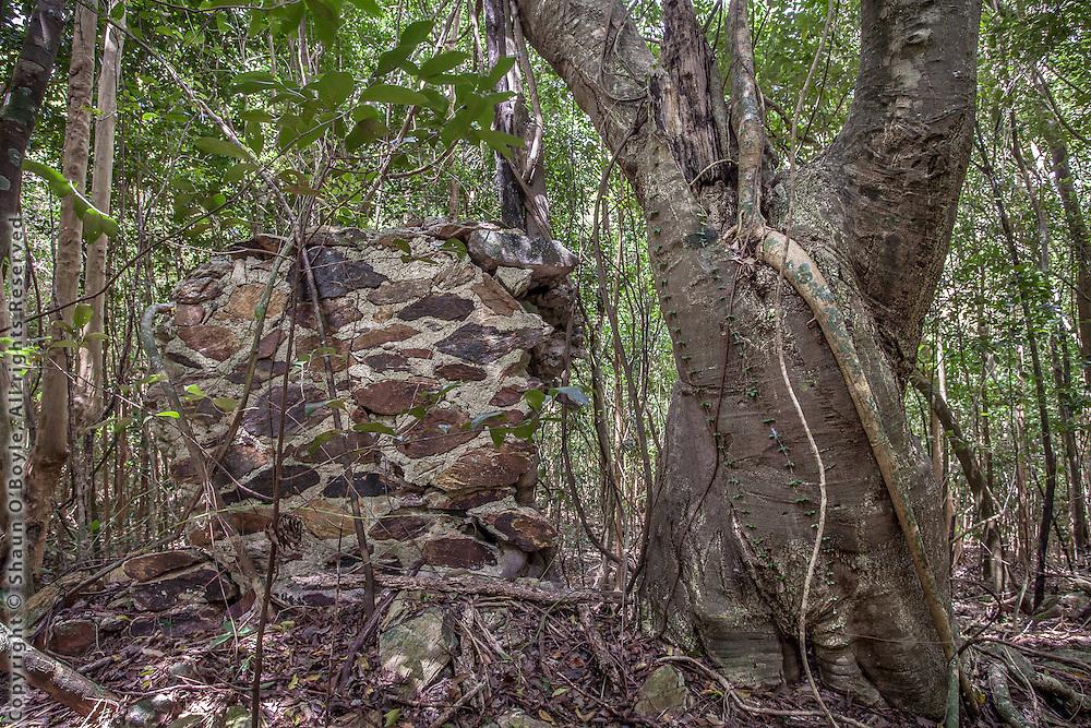 Misgunst Ruins, St John, USVI