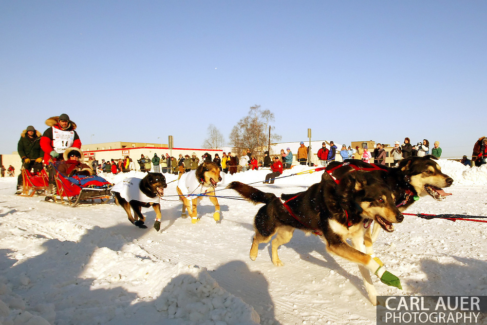 3/3/2007:  Anchorage Alaska -  Veteran Jeff King of Denali, AK sprints around the corner of 4th and Cordova during the Ceremonial Start of the 35th Iditarod Sled Dog Race