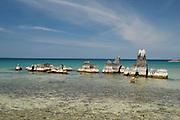 The beautiful white sandy beach by Mchenga Nkwichi lodge, Lake Niassa, Mozambique, Africa.