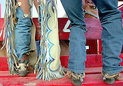 Cowboys prepare an unsure bronc in the chutes before a ride.