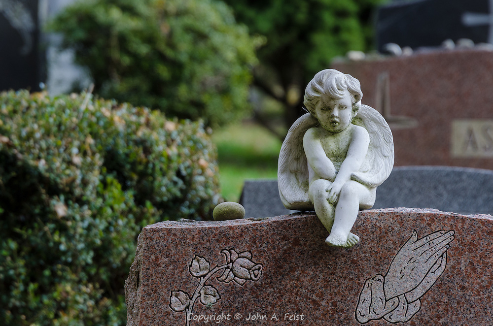 Everything came together beautifully at this headstone in Sleepy Hollow Cemetery.  The angel sitting sad and humble on top of the headstone and is that a small tear under its eye?  The angel is framed by the praying hands, a single rose and a stone to mark someone's visit to the dear departed.