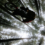 Owen Dudley catches air in the mist of the Northwest Rainforest near Bellingham, WA.