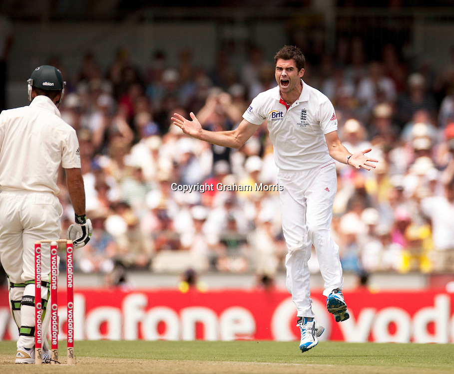 Bowler James Anderson celebrates the wicket of Ricky Ponting during the third Ashes test match between Australia and England at the WACA (West Australian Cricket Association) ground in Perth, Australia. Photo: Graham Morris (Tel: +44(0)20 8969 4192 Email: sales@cricketpix.com) 16/12/10
