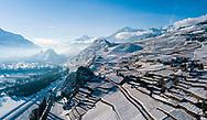 le vignoble a Uvrier Valais en hiver 2017 avec la ville de Sion, les chateaux de Val&egrave;re et Tourbillon<br /> (OLIVIER MAIRE)<br /> <br /> plaine du Rhone, vignes sous la neige vin  tourisme paysage Valais Wallis