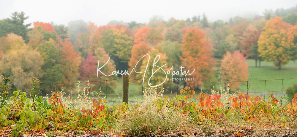 Fall in Gilford, NH.   ©2018 Karen Bobotas Photographer
