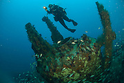 Scuba diver on the shipwreck of the U-352 offshore North Carolina, United States