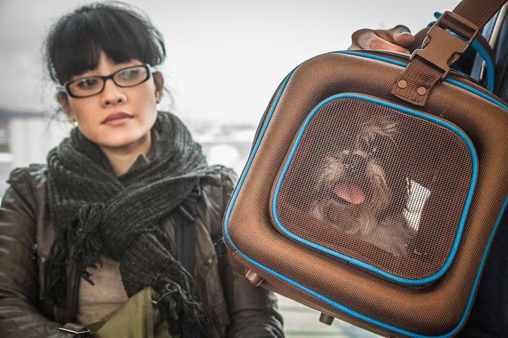 Kristine Hurley with her dog, Simon, on the Bart, San Francisco, California