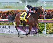 Awesome Feather remains undefeated with a victory in the Sunshine Millions Distaff at Gulfstream Park on 1-28-12. Ridden by Jeffrey Sanchez