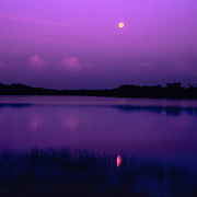 A full lunar eclipse reflecting in Nine Mile Lake on the road to Flamingo in Everglades National Park, FL.