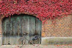 Rekem, Limburg, Belgium