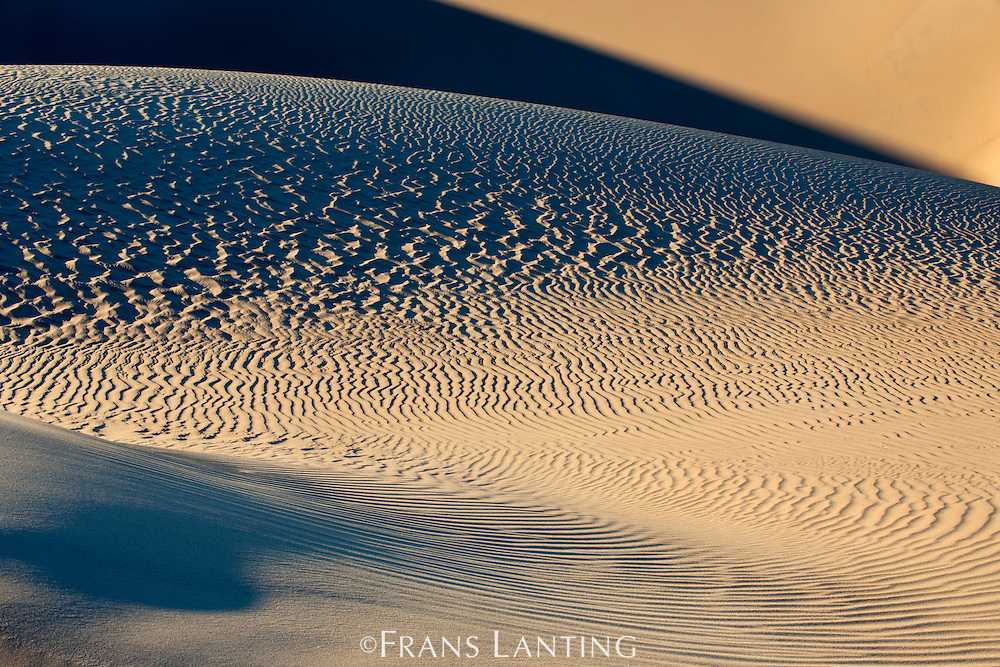 Sand dune patterns, Sperrgebiet National Park, Namibia