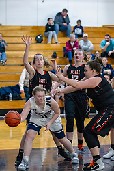 21 January 2019:1st round game of the 108th McLean County Tournament at El Paso - Gridley High School in El Paso Illinois.   Fisher Bunniesv Ridgeview Mustangs girls