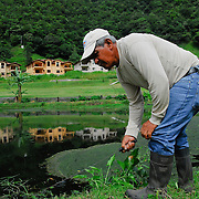 Town, of Boquete, Province of Chiriqui, country of Panama. Juan de Dios Acosta, a gardener in Valle Escondido, a new hig end residential project in Boquete, works in the golf field.  Valle Escondido, like most new hotels and residential areas, also represent new job opportunity for the locals of the town.