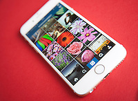 Instagram photo feed screen on a Gold and white Apple iPhone 6 against a red background