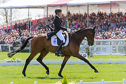 Dirk Schrade and KING ARTUS lie in second place after the Dressage phase of the Mitsubishi Motors Badminton Horse Trials, May 4 2013.