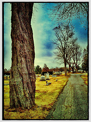 "South Street cemetery, Portsmouth, New Hampshire. iPhone photo - suitable for print reproduction up to 8"" x 12""."