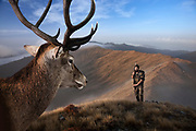 Hunter, studio composite. Background is the Southern Paparoa Range, West Coast