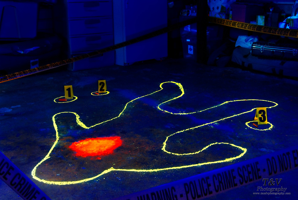 A glowing blood stain is surrounded by a chalk outline at a crime scene. Blacklight Photography.