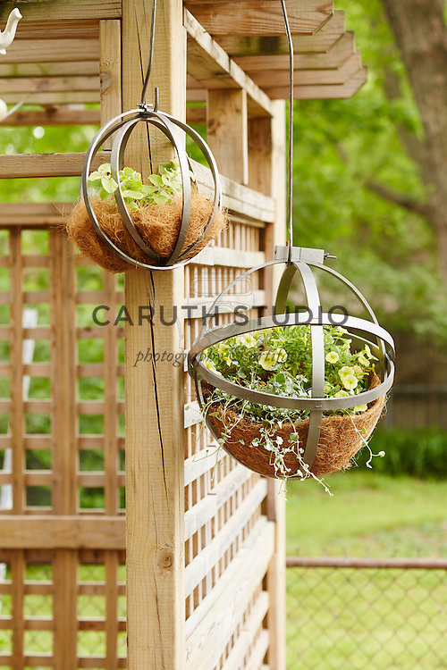 Easy DIY plant hangers made from wood embroidery hoops