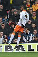Picture by David Horn/Focus Images Ltd +44 7545 970036.09/03/2013.Tom Ince of Blackpool celebrates scoring his side's first goal in front of the Watford fans during the npower Championship match at Vicarage Road, Watford.