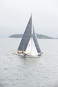 Thora, and Wild Horses sailing in the Museum of Yachting Classic Yacht Regatta.