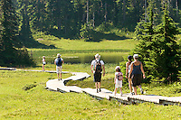 Hikers and casual walkers walk along a system of boardwalks as they navigate through the Paradise Meadows region near Mt. Washington in the Comox Valley.  Mt. Washington, The Comox Valley, Vancouver Island, British Columbia, Canada.