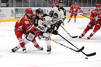 GET-ligaen Ice Hockey, 27. october 2016 ,  Stavanger Oilers v Stjernen<br />Kristian Forsberg fra Stavanger Oilers i aksjon v Robin Axbom fra Stjernen<br />Foto: Andrew Halseid Budd , Digitalsport