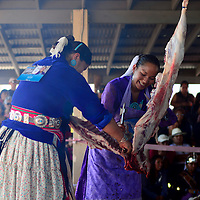 090413  Adron Gardner/Independent<br /> <br /> Miss Navajo Pageant contestants Darrian Renae Isaac, right, and Wallita Begay, left, work together during the sheep butchering competition at the Navajo Nation Fairgrounds in Window Rock Wednesday.